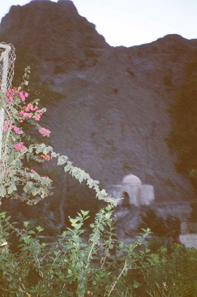 jardin d'Aden